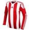 Camiseta adidas Striped 15 S17189