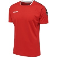 Camiseta de Fútbol HUMMEL HmlAuthentic Poly 204919-3062