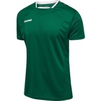 Camiseta de Fútbol HUMMEL HmlAuthentic Poly 204919-6140