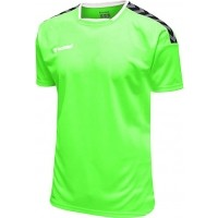 Camiseta de Fútbol HUMMEL HmlAuthentic Poly 204919-6750