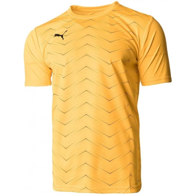 Camiseta Entrenamiento Puma FTBLNXT Graphic Core