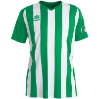 Camiseta Luanvi New Listada