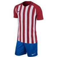Equipación Nike Striped Division III
