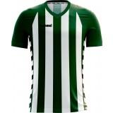 Camiseta de Fútbol HUMMEL Essential Authentic V Striped E03-019-6131