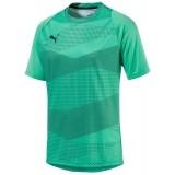 Camiseta Entrenamiento de Fútbol PUMA ftbINXT Graphic 655781-04