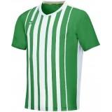 Camiseta de Fútbol MIZUNO Shima P2FA9A01-38