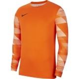 Camisa de Portero de Fútbol NIKE Park IV GK CJ6066-819