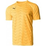 Camiseta Entrenamiento de Fútbol PUMA FTBLNXT Graphic Core 656516-04