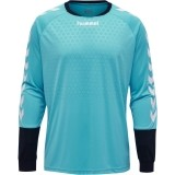 Camisa de Portero de Fútbol HUMMEL Essential 04087-7905