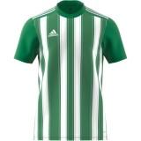 Camiseta de Fútbol ADIDAS Striped 21 H35644