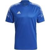 Camiseta Entrenamiento de Fútbol ADIDAS Condivo 21 Training Jersey GH7165