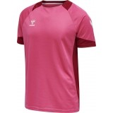 Camiseta de Fútbol HUMMEL HmlLead Poly Jersey 207393-3576