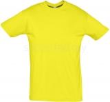 Camiseta de Fútbol SOLS Regent 11380-302