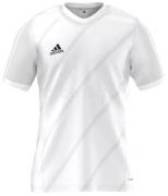 Camiseta de Fútbol ADIDAS Tabe 14 F50278