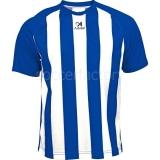 Camiseta de Fútbol ASIOKA Viena 84/11-17/01