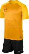 Equipación de Fútbol NIKE Trophy III P-881483-739