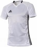 Camiseta de Fútbol ADIDAS Condivo 16 TRG S93534