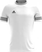 Camiseta de Fútbol ADIDAS Entrada 14 BP7191
