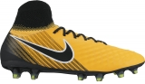Bota de Fútbol NIKE Magista Orden II FG 843812-801