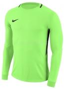 Camisa de Portero de Fútbol NIKE Park Goalie III 894509-398
