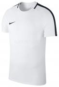 Camiseta de Fútbol NIKE Academy 18 893693-100