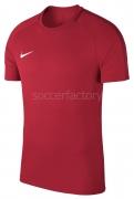 Camiseta de Fútbol NIKE Academy 18 893693-657