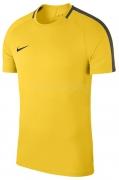Camiseta de Fútbol NIKE Academy 18 893693-719