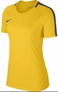 Camiseta Mujer de Fútbol NIKE Women´s Academy 18 Training Top 893741-719
