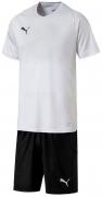 Equipación de Fútbol PUMA Liga Core P-703509-04