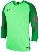 Camisa de Portero de Fútbol NIKE Gardien 898043-398