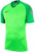 Camisa de Portero de Fútbol NIKE Gardien 894512-398