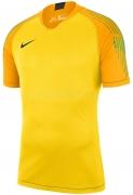 Camisa de Portero de Fútbol NIKE Gardien 894512-719