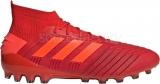 Bota de Fútbol ADIDAS Predator 19.1 AG D98052