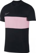 Camiseta de Fútbol NIKE Dri-Fit Academy AJ9998-011