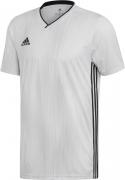 Camiseta de Fútbol ADIDAS Tiro 19 DP3537