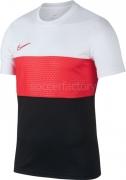 Camiseta de Fútbol NIKE Dri-Fit Academy AJ9998-101