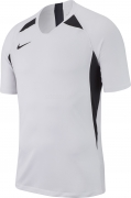 Camiseta de Fútbol NIKE Striker V AJ0998-100