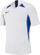 Camiseta de Fútbol NIKE Striker V AJ0998-102