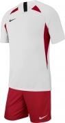 Equipación de Fútbol NIKE Striker V P-AJ0998-101