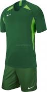 Equipación de Fútbol NIKE Striker V P-AJ0998-302