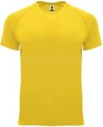 Camiseta de Fútbol ROLY Bahrain CA0407-03