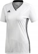 Camiseta Mujer de Fútbol ADIDAS Tiro 19 Women DP3188