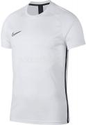 Camiseta de Fútbol NIKE Dri-FIT Academy AJ9996-100